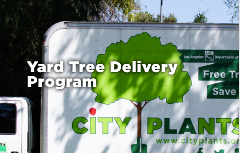 City Plants Yard Tree Delivery Program