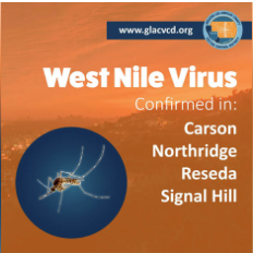 West Nile Virus flyer