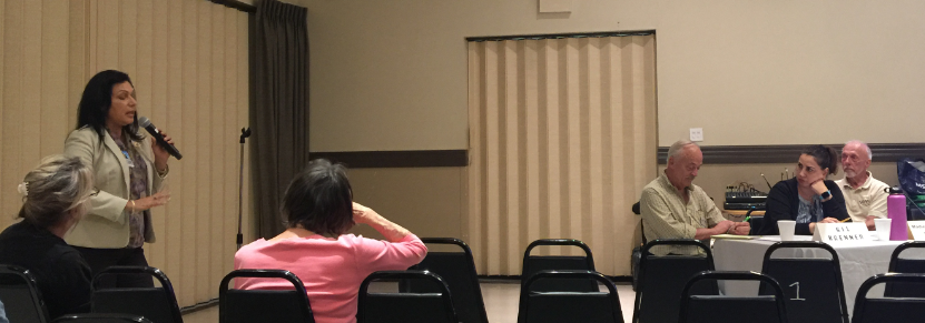 Raquel Beltrán at North Hills West Neighborhood Council