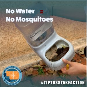 Eliminate Standing Water