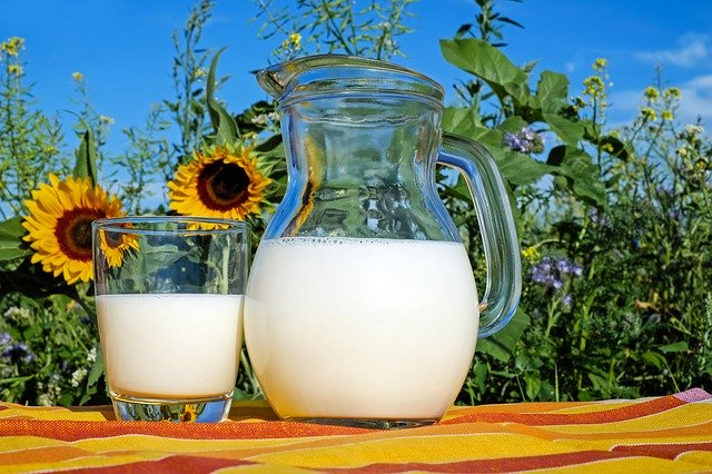 Pitcher of milk