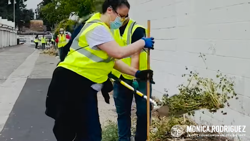 removing weeds