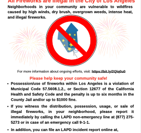 illegal fireworks flyer